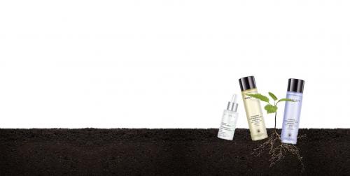 每树化妆品:牢牢地占据着美妆行业领先地位