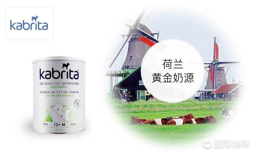 荷兰版的佳贝艾特表现怎么样,详细测评佳贝艾特羊奶粉能打多少分